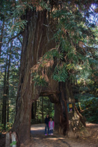oregon-trip-ca-2017-156